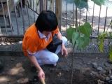 Umat ikut berpartisipasi dalam proses penanaman pohon Bodhi